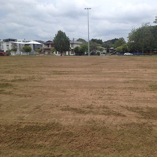 Fertilized Top Dress Sand - supply Bulk Landscape Supplies, Brisbane