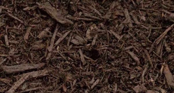 Forest Mulch Premium - Bulk Landscape Suppliers Brisbane