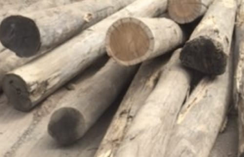 Timber Landscaping Products Brisbane - Bulk Timber Logs