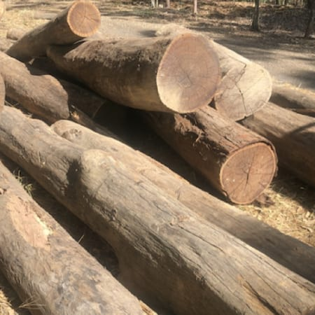 Timber Log Deliveries Brisbane - Jimel Transport