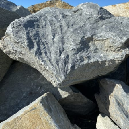 Large Landscaping Rocks - Bulk Landscape Suppliers Brisbane